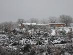 foto-con-neve-1