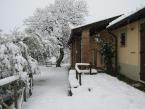 giardino-con-neve