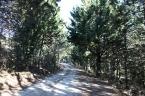 Sentiero che porta all'Agriturismo Colleciglio