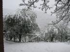 scale-in-giardino-con-neve